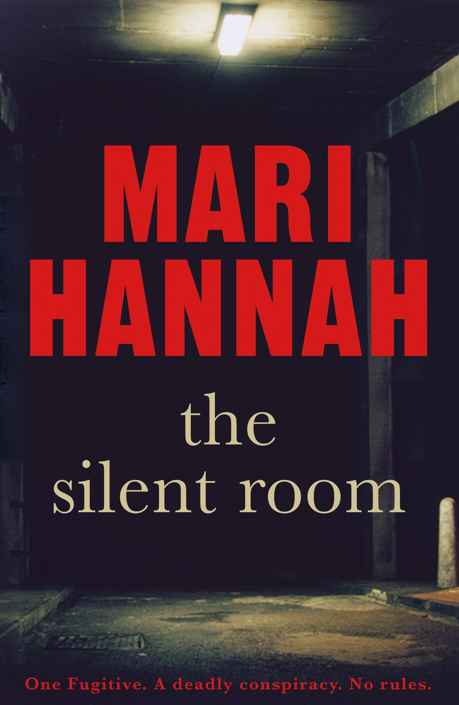 The Silent Room by Mari Hannah