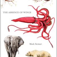 Speaking Up For the Voiceless| #guestpost by Mark Stewart #TheAbsenceOfWings @pendragonmist