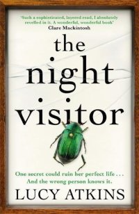 The Night Visitor Lucy Atkins