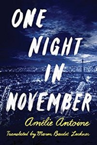 One Night in November by Amelie Antoine
