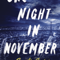 #BookReview: One Night in November by Amelie Antoine
