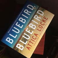 #BlogTour: Bluebird Bluebird by Attica Locke @serpentstail
