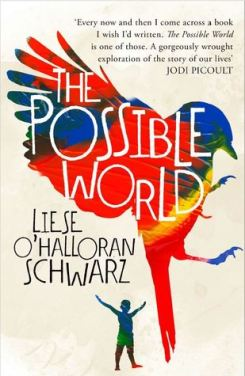 the possible world liese o'halloran schwarz