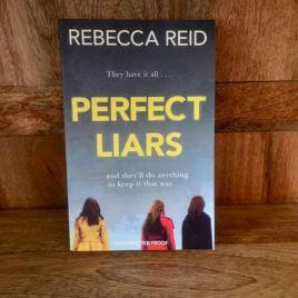 perfect liars rebecca reid