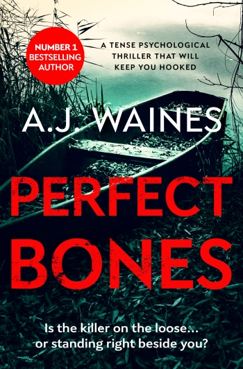 A.J. Waines - Perfect Bones_cover