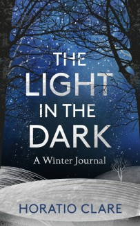 Light in the Dark Cover