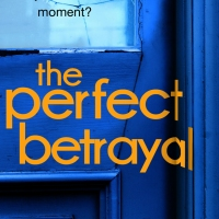 Review: The Perfect Betrayal by Lauren North | @Lauren_C_North @TransworldBooks @damppebbles