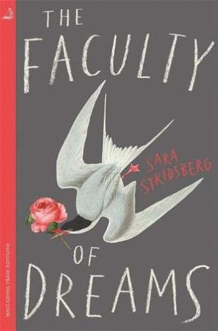 the faculty of dreams sara stridsberg
