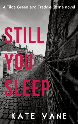 Still You Sleep by Kate Vane