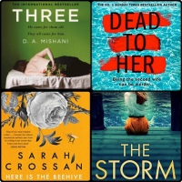 Mini Book Reviews: Three | The Storm | Here Is The Beehive | Dead To Her
